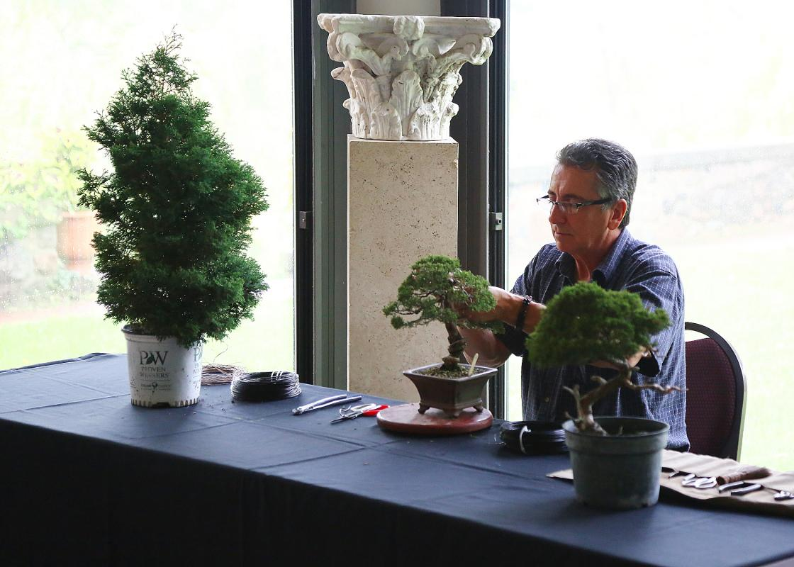 Bonsai demonstration by Jack Sustic