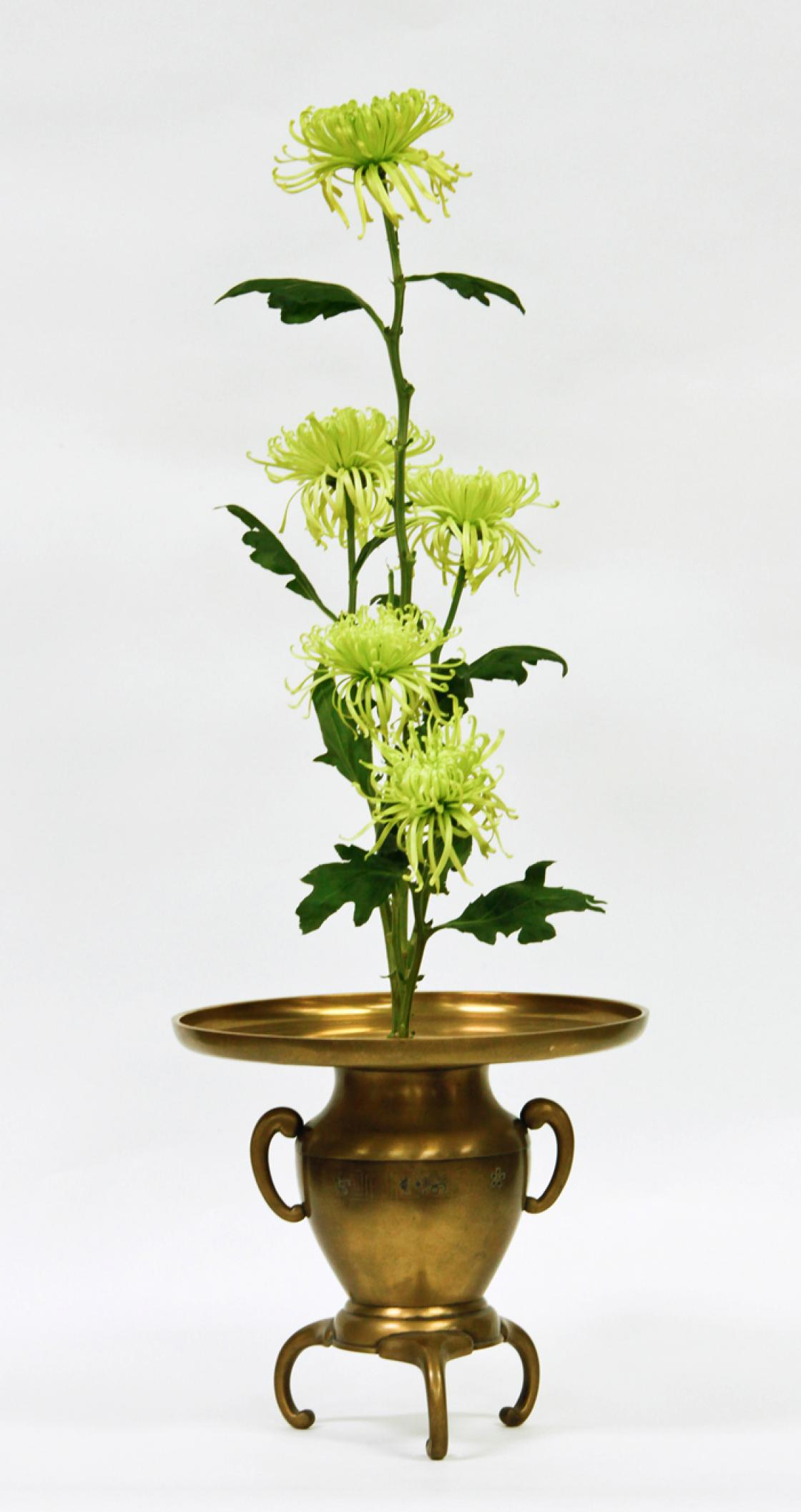 Ikebana arrangement featuring chrysanthemums
