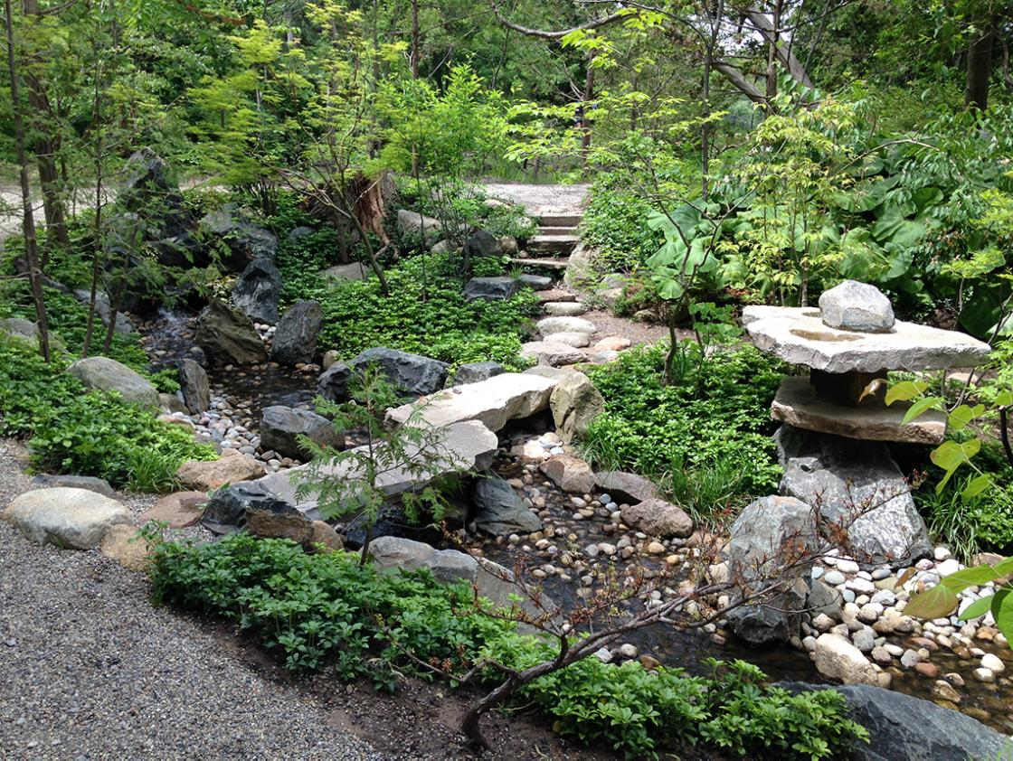 Photograph of the Lily Pond Cascade in the Cranbrook Japanese Garden, June 14, 2019. Photograph by Gregory Wittkopp.