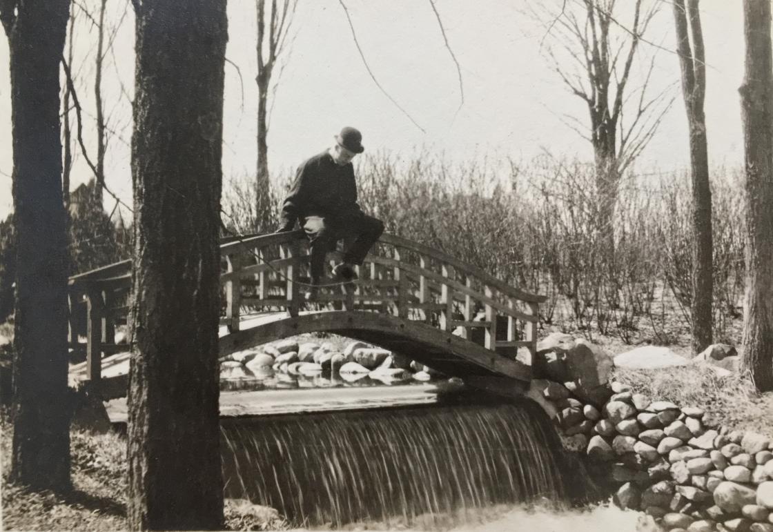 Japanese Bridge at Cranbrook
